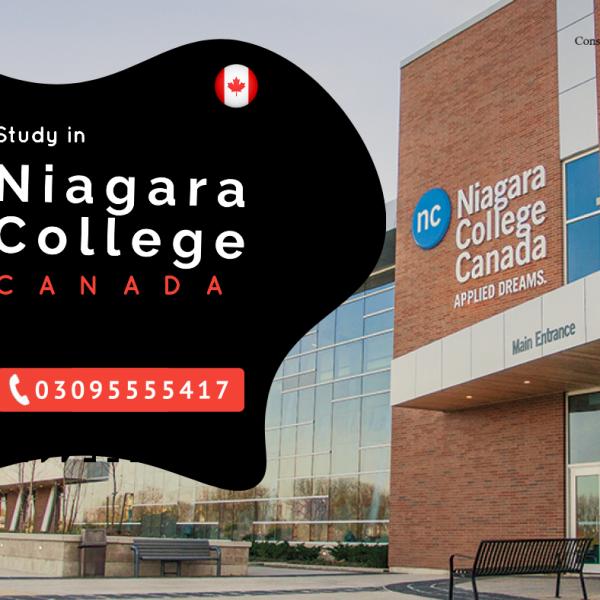 Study in Niagara