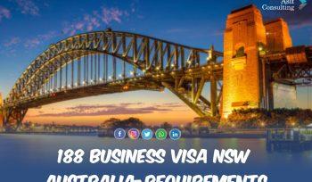Provisional Visa